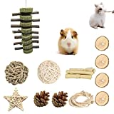 Fansisco Bunny Chew Toys for Teeth, Natural Organic