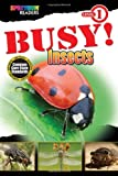 BUSY! Insects, Lisa Kurkov, 1483801144