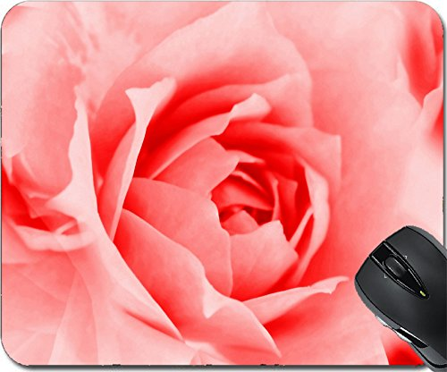 Beautiful Roses Wallpaper (MSD Mousepad Mouse Pads/Mat design 35241440 Rose Wallpaper with Soft Focus Color Filtered)