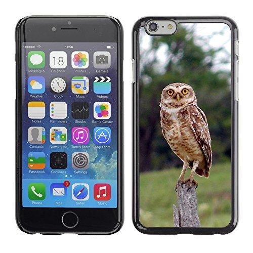 """Premio Sottile Slim Cassa Custodia Case Cover Shell // V00002964 chouette // Apple iPhone 6 6S 6G 4.7"""""""