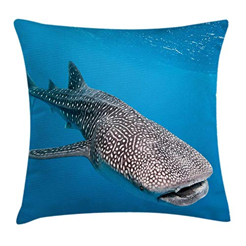 K0k2t0 Ocean Throw Pillow Cushion Cover, Whale Shark Swimming Predators Hunter Clear Water Under The Sea Picture Art, Decorative Square Accent Pillow Case, 18 X 18 inches, Aqua Blue and Grey (Settee Hunter)