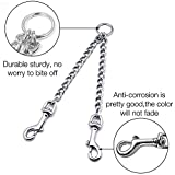 Pettom Heavy Duty 2 Way Dog Lead Metal Chain Double Leash Pet Clip Coupler for Walking Training