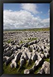 Limestone Pavement, Malham Cove, Yorkshire Dales National Park, North Yorkshire, England by David Wall / Danita Delimont Framed Art Print Wall Picture, Black Frame, 21 x 30 inches