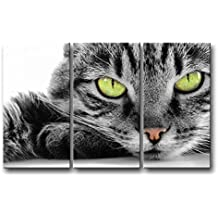 3 Piece Black And White Wall Art Painting Green Eye Cat Pictures Prints On Canvas Animal The Picture Decor Oil For Home Modern Decoration Print