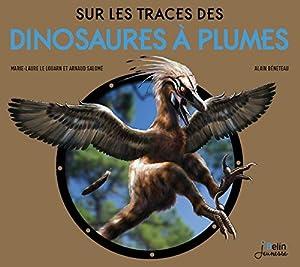 """Afficher """"Sur les traces des dinosaures à plumes"""""""