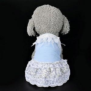 Sumen 2017 New Small Dog Princess Bow Tutu Dress Pet Girls Lace Skirt (S, Blue)