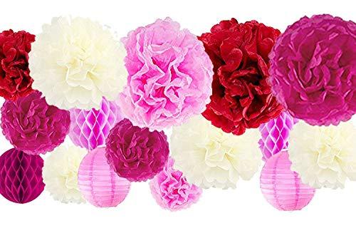Wedding Red Flowers Pink (VIDAL CRAFTS 30 Pcs Tissue Paper Pom Poms Kit (14
