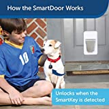 PetSafe Electronic SmartDoor - Collar Activated Dog and Cat Door - Small  Pets