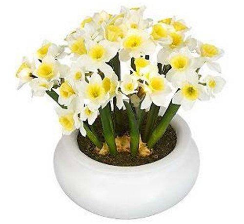 Panacea 89009 2 Piece Flower Box Deck Bracket, White