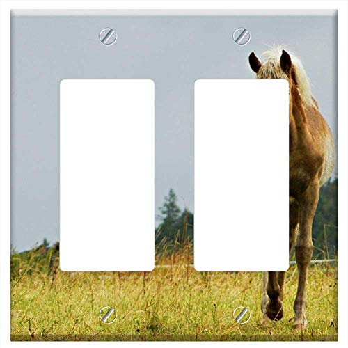 (Switch Plate Double Rocker/GFCI - Haflinger Foal Pasture Horses Love For Animals)