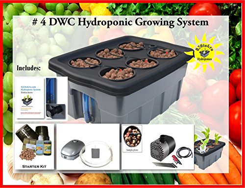 Hydroponic Growing System Self-watering DWC Bubbler Kit # 4-6 H2OtoGro by H2OToGro