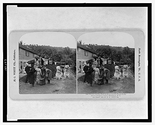 Photo: Reproduction, Streets of Fort de France, Martinique, West Indies, c1902, West Indians . Size:
