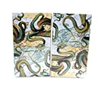 World Buyers Decorative Matches