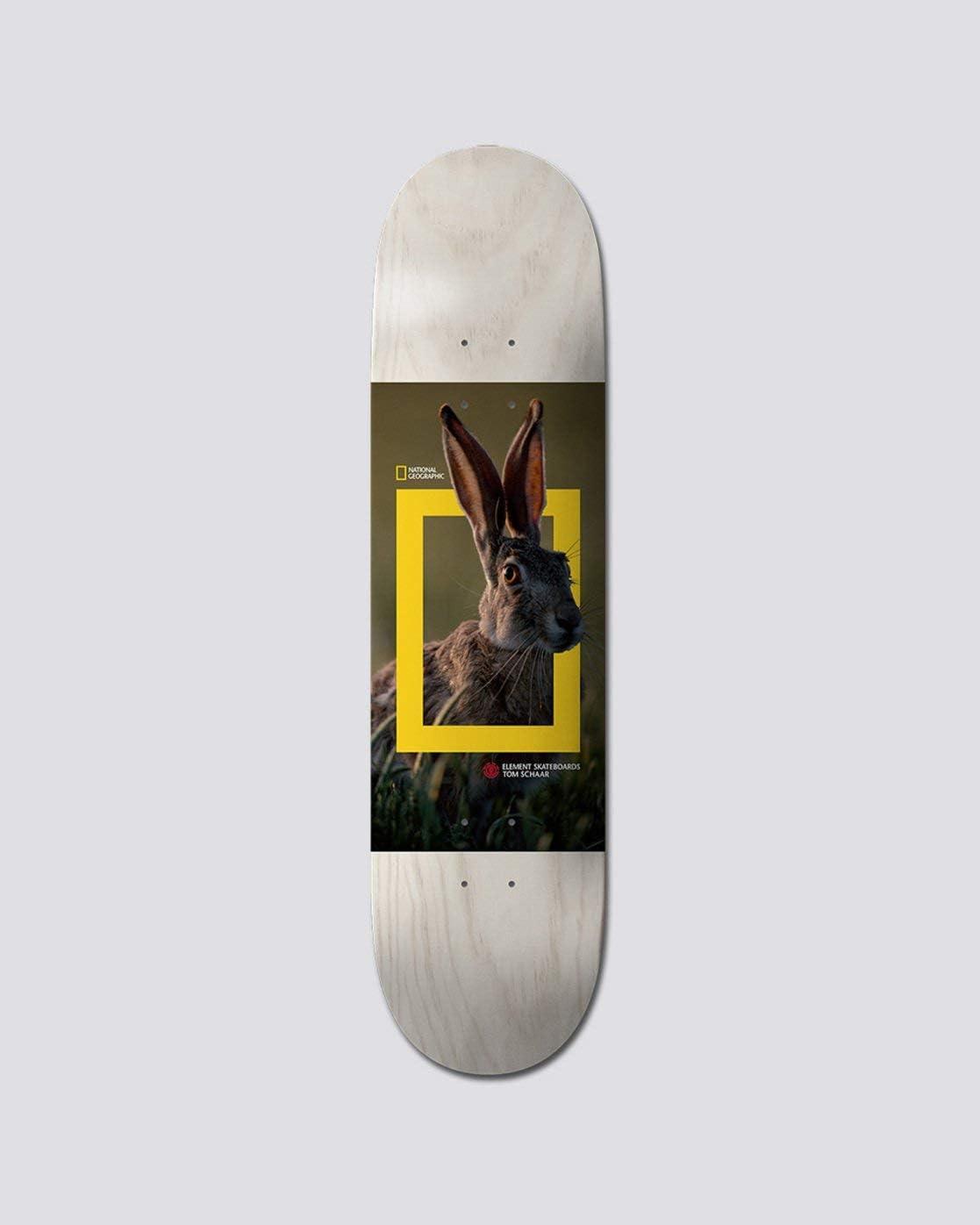 Element Schaar Nat Geo Hare 8.0 Deck kaufen