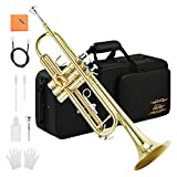 Best Brass Trumpets - Eastar Gold Trumpet Brass ETR-380 Standard Bb Trumpet Review