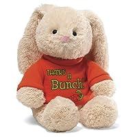 Gund T-Shirt Bunny Thanks A Bunch 12 Plush