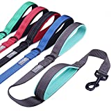 Vivaglory Padded Handle Dog Leash, Heavy Duty 4ft Long Double Handle Leash Reflective Safety Training Leash Walking Lead for Medium to Large Dogs, Grey