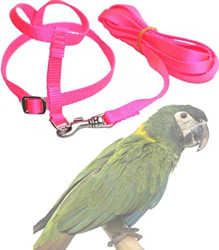Pink Bird Harness - 3