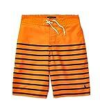 Ralph Lauren Polo Boys Striped Swim Trunks ( XL 18 - 20)