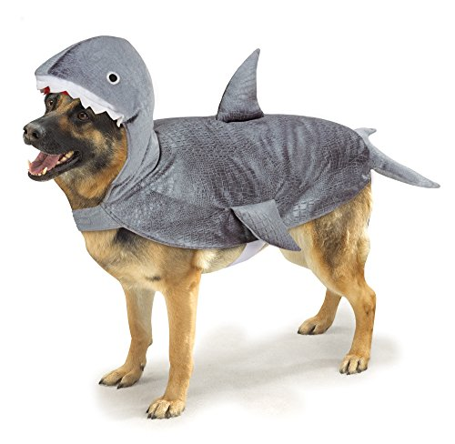 Pet Shark Costumes (Casual Canine Casual Canine Shark Costume for Dogs, 24