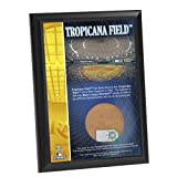 MLB Tampa Bay Devil Rays Tropicana Field 4x6-Inch Game Used Dirt Plaque Photomint