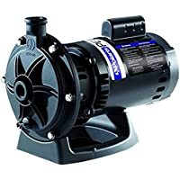 Amazon Best Sellers Best Pool Pump Replacement Parts