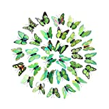 30 PCS Wall Decal Butterfly,Rainbow Butterfly Wall Sticker Decals for Room Home Nursery Decor