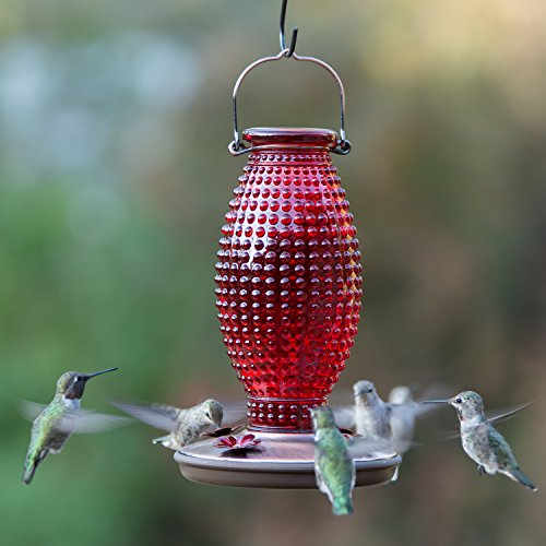 Perky-Pet Red Hobnail Vintage Glass Hummingbird Feeder 8130-2 by Perky-Pet (Image #1)
