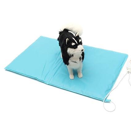 GEMITTO - Alfombrilla eléctrica Impermeable para Mascotas, 60 x 40 cm, Resistente a Las