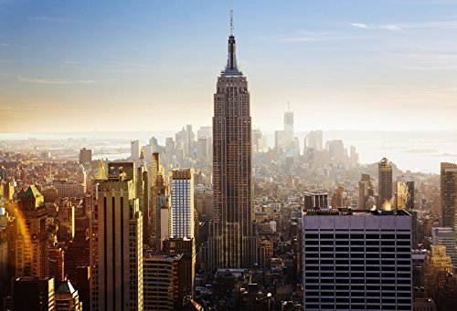 OFILA New York Empire State Building Backdrop 9x6ft National Historic Landmark Modern City World Wonder Tourist Attractions Valentine's Day Wedding Background Adult Travel Business Center (Party City Holiday)