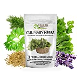 15 Culinary Herbs - Non GMO Heirloom Seeds Organically Grown - Easy to Grow Gardening - Comprehensive Growing Guide - USA Family Farm Certified Seed Company- Portion of Every Purchase to Charity