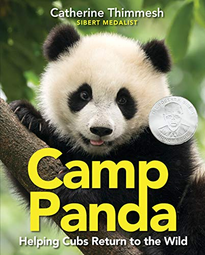 Camp Panda: Helping Cubs Return to the Wild