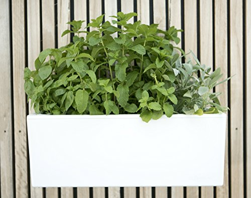 GlowPear Urban Garden Self Watering Planter product image