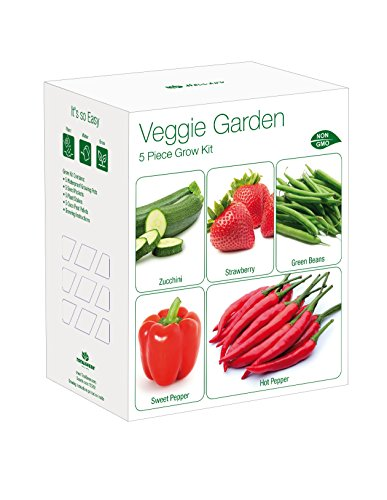 Indoor Veggie Garden Grow Kit | Grow Your Own Zucchini, Strawberry, Sweet Pepper, Hot Pepper & Green Beans From Seed | Indoor Garden Germination Kit | Exclusively By TotalGreen Holland (Seeds Grow Strawberry)