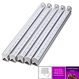 [Pack of 5] RAYWAY Plant T5 Tube Light, 5Pcs SMD5630 LED Grow Bar Light + Switch Cable + US Plug , for Aquarium Greenhouse Hydroponics Indoor Vegetable Flower Seeding