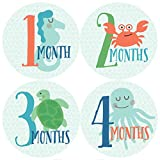Monthly Baby Stickers, Ocean, Sea Creatures, Fish Stickers, Baby Stickers