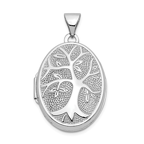 14k White Gold 21x16mm Oval Tree Photo Pendant Charm Locket Chain Necklace That Holds Pictures Fine Jewelry Gifts For Women For Her