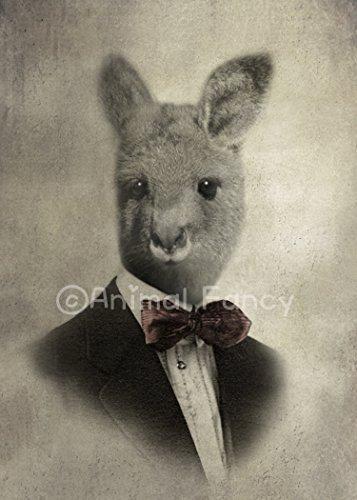 Kangaroo Art Print -