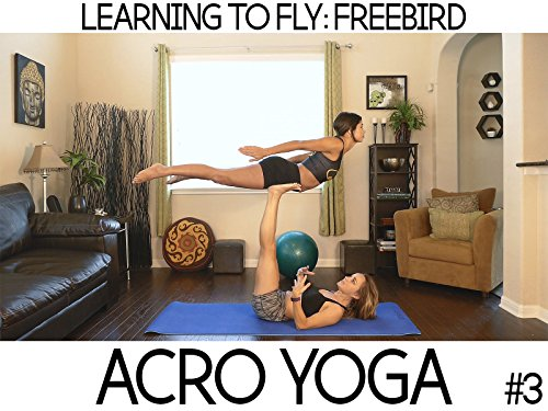Learn to Fly- Freebird