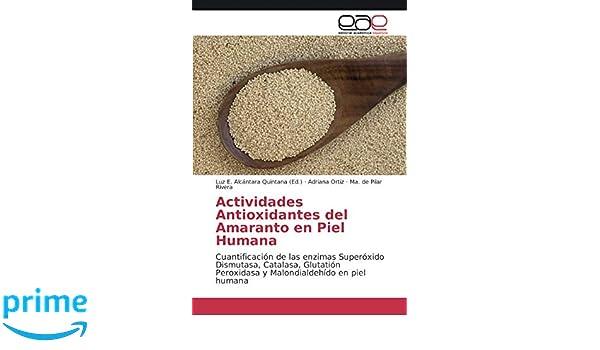 Actividades Antioxidantes del Amaranto En Piel Humana ...