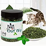 Qianren Catnip Treat for Cat Clean Mouth Split Hair Ball