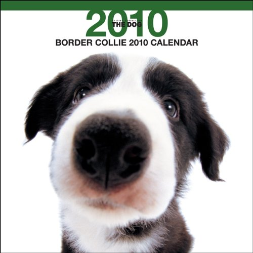 Border Collie 2010 Square Wall ARTLIST (The Dog Artist Collection) (Multilingual Edition)