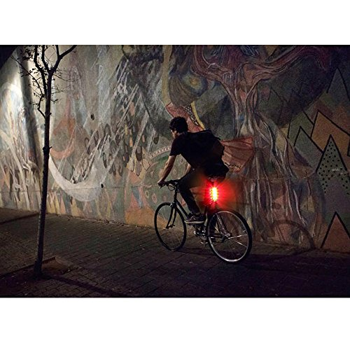 LE USB CREE LED Super Bright Bike Rear Tail Light 5 Lighting Modes Easy Install Red Safety Cycling Light - Fits on Any Bicycles Helmet Backpack by Lighting EVER (Image #5)