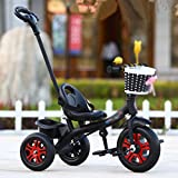 Tricycle Childrens