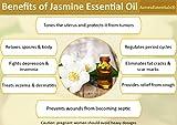 Essential-Oils-Aromatherapy-Kit-Top-10x10ml-100-PURE-or-REFUND-TherapeuticCalm-MindBoost-HealthEucalyptusLavenderGrapefruitPeppermintOrangeTea-TreeYlang-YlangJasminePine-Bergamot
