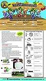 Bug Sales Beneficial Nematodes Hb Heterohabditis