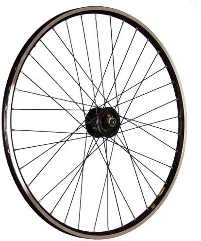 Taylor-Wheels 28 Pulgadas Rueda Delantera Bici Dinamo buje Alfine ...