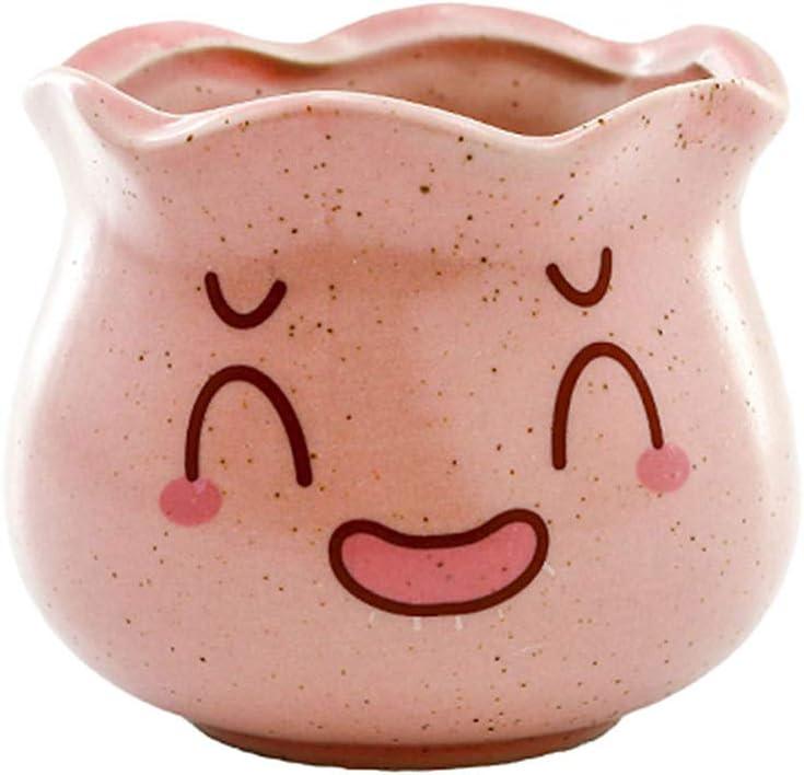 TUANTALL Maceta Ceramica Macetas Pequeñas La Planta Olla Pote de Flor Planta Alta Olla Semillas de ollas La Planta Macetas Planta de Marihuana Pink