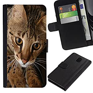 Graphic Case / Wallet Funda Cuero - Savannah Ocicat Serengeti Toyger Cat - Samsung Galaxy Note 3 III N9000 N9002 N9005