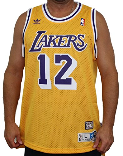 Vlade Divac Los Angeles Lakers Adidas NBA Throwback Swingman Jersey - Gold